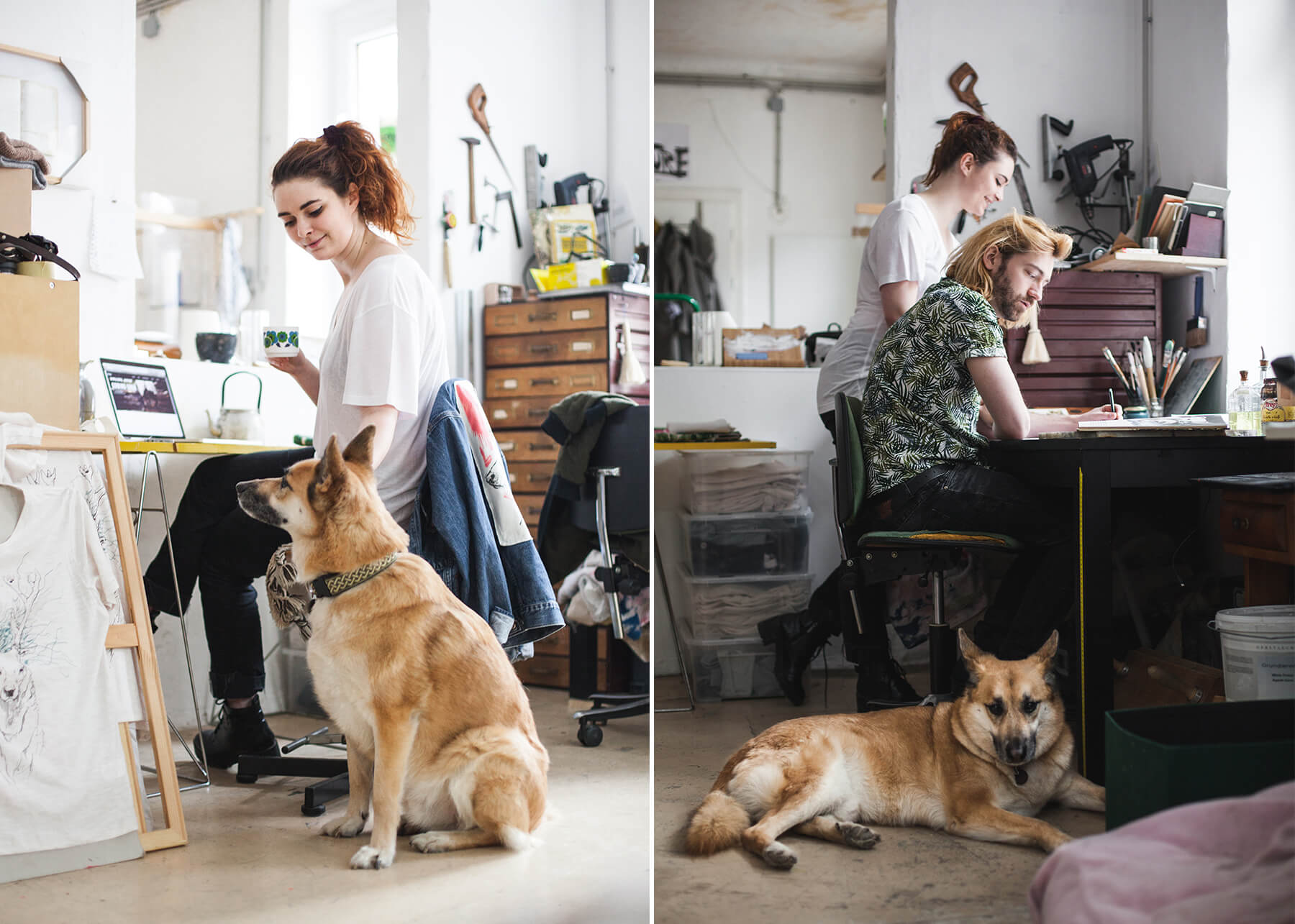 Die_Stadthunde_Fuxherz_Portrait_Jolly_Schwarz_Alexandra_Stalzer_Wien_Hunde_Stadt