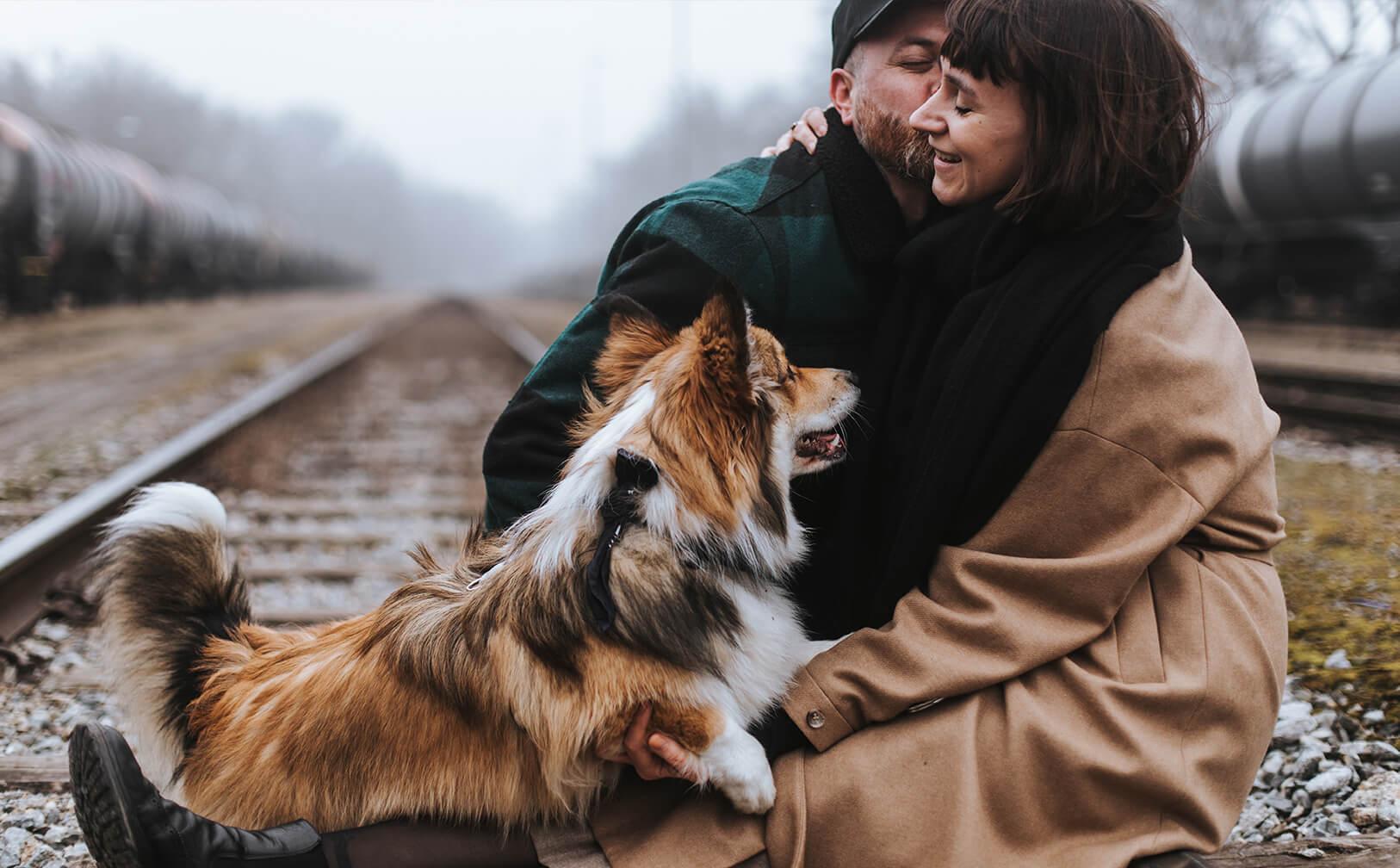 Die Stadthunde Jolly Schwarz Photography Alexandra Stalzer Grafikdesign Wien Hunde Stadt